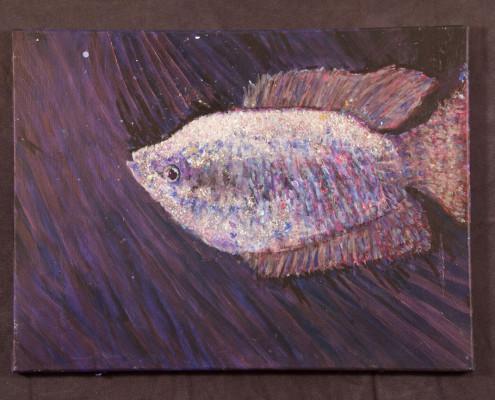 Fish Or Swim